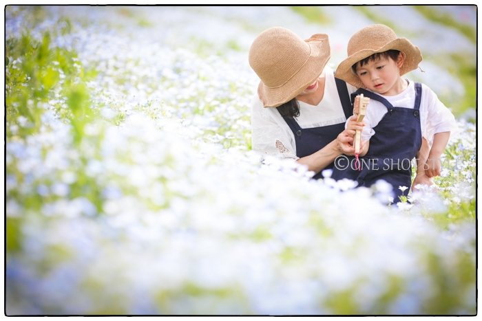 ネモフィラ_ロケーションフォト_家族写真_出張撮影_名古屋