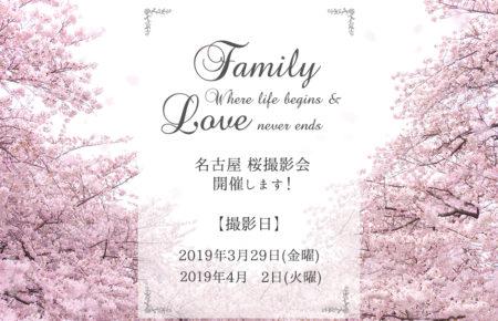 愛知 名古屋 桜 撮影会 家族写真 子供写真 出張撮影