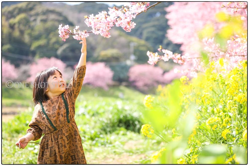 愛知 名古屋 家族写真 出張撮影 ワンショットスタイル ロケーションフォト