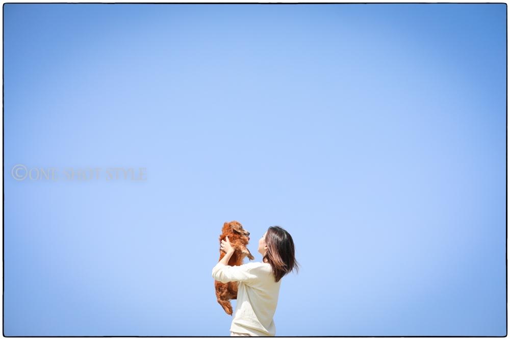愛知 ロケーション撮影 ペット写真 家族写真 ネモフィラ