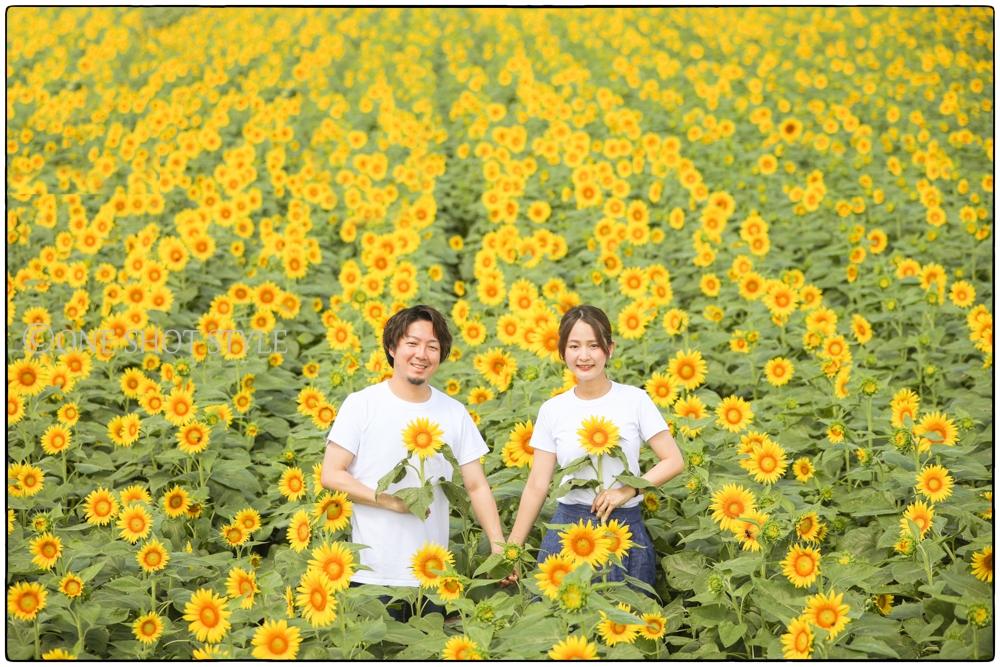 愛知 名古屋 出張撮影 ひまわり畑 観光農園花ひろば 家族写真