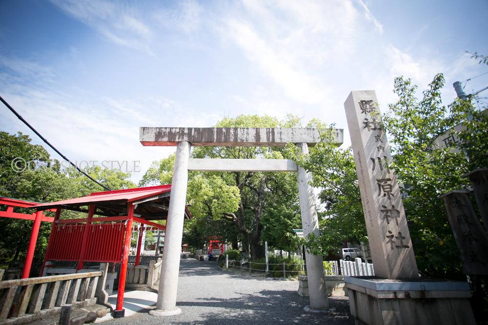 七五三 愛知 名古屋 川原神社 出張撮影